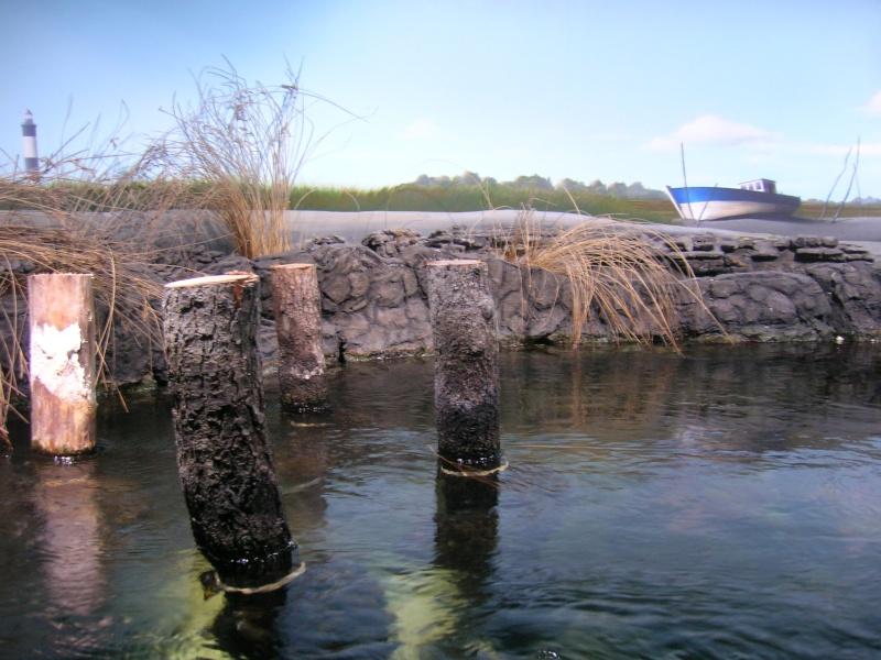 Aquarium La Rochelle Dscn4017