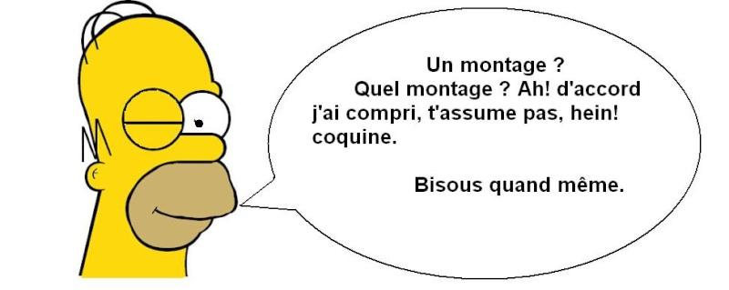 Salut les GoGo(s) Homer_10