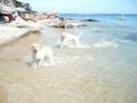 maya s'éclate à la plage! P1000718