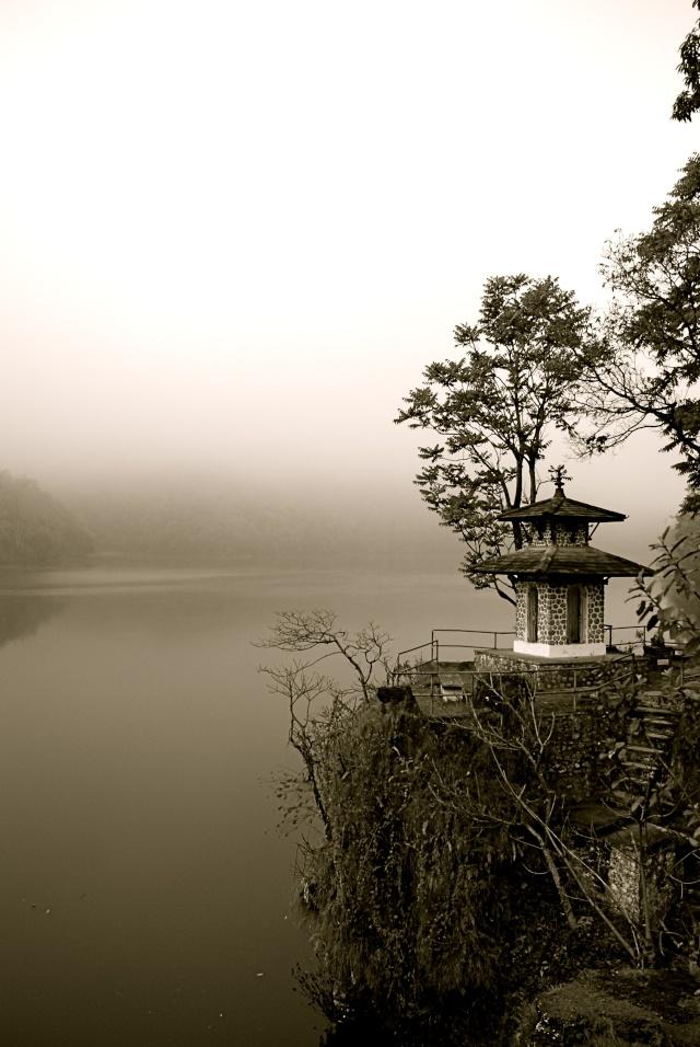 Photos Zen - Page 2 Dsc_0813
