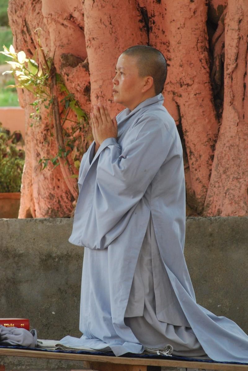 Photos Zen - Page 2 Dsc_1211
