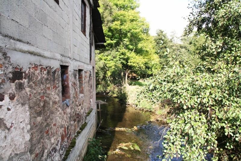 La Mossig , notre rivière Img_5610