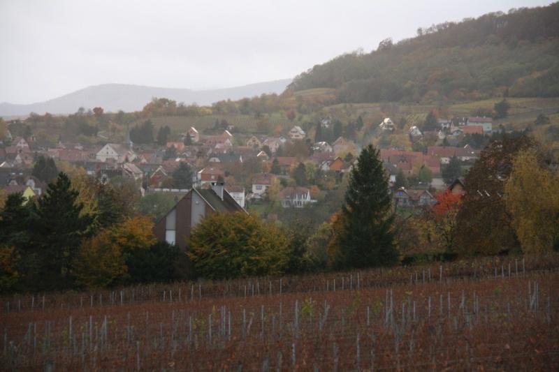 Sur le Marlenberg ....... Img_5810