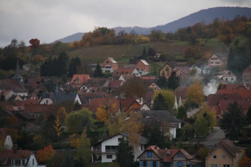 Sur le Marlenberg ....... Img_5910
