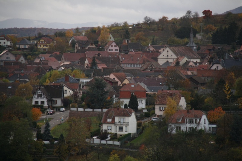 Sur le Marlenberg ....... Img_5911