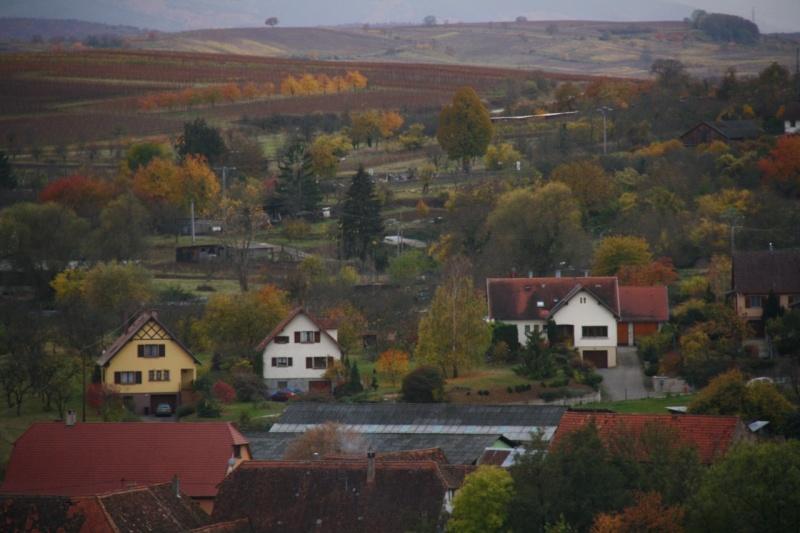 Sur le Marlenberg ....... Img_5913