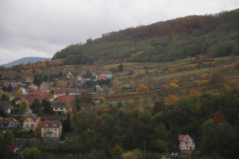 Sur le Marlenberg ....... Img_5915