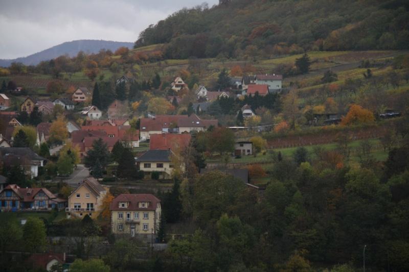 Sur le Marlenberg ....... Img_5916