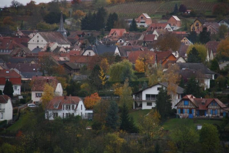 Sur le Marlenberg ....... Img_5920