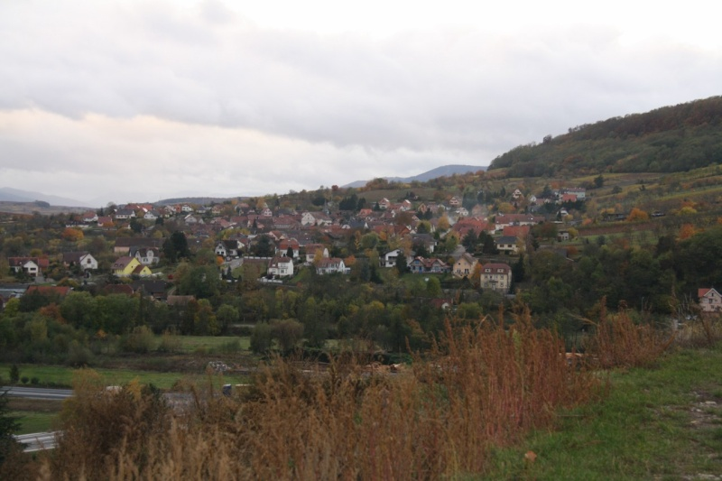 Sur le Marlenberg ....... Img_5923