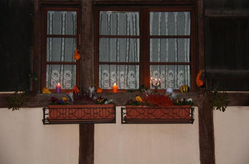 Promenade de la Saint Martin  le 11 novembre 2009 à Wangen Img_6049