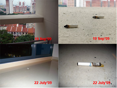 Inconsiderate Neighbour Cigare11