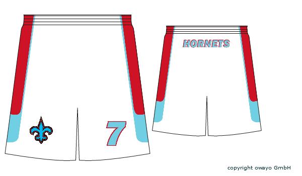 Le fil des CHOLET HORNETS (greenflo) - Page 2 Homesh10