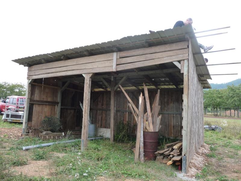 Kintzheim : Recontruction de l'arbi P1030811