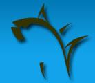 KayakFish