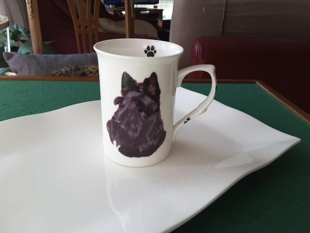 Mug Scottish Terrier 20190213