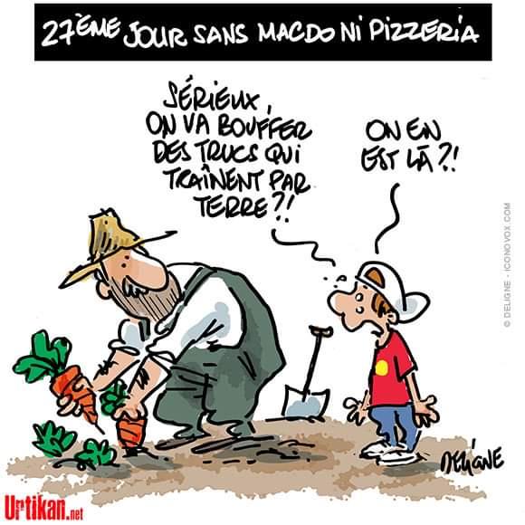 Humour du jour - Page 5 Pizz10