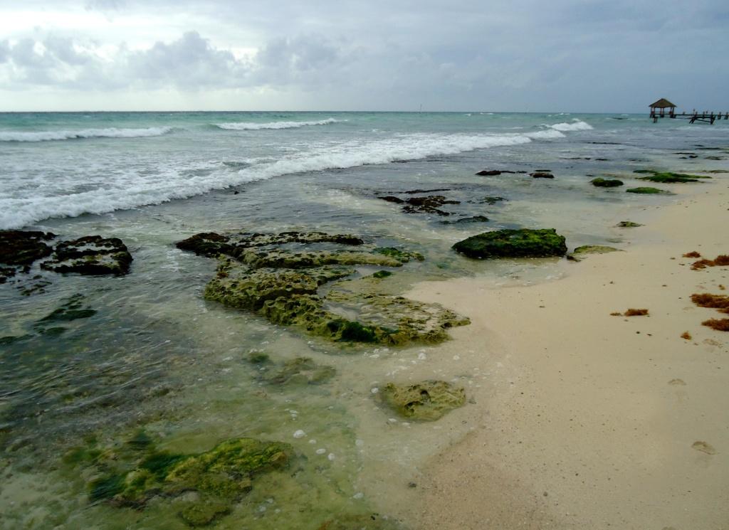[fil ouvert]  Sable et plages  - Page 4 2010-023
