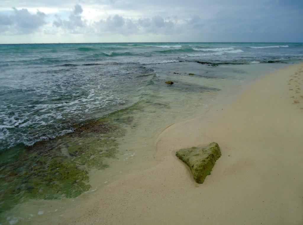 [fil ouvert]  Sable et plages  - Page 4 2010-024