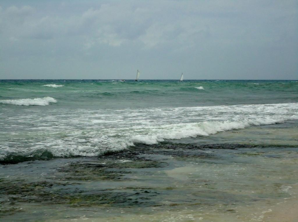 [fil ouvert]  Sable et plages  - Page 4 2010-025