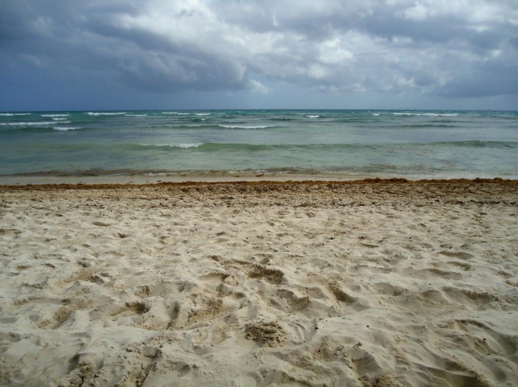 [fil ouvert]  Sable et plages  - Page 4 2010-028