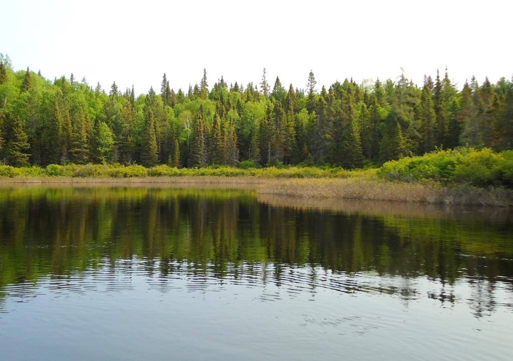 Lac Bouchette - Page 2 2010-118