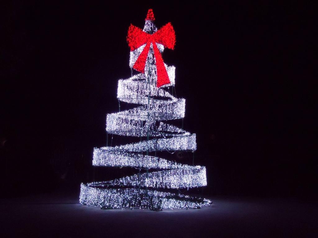 Thème du mois de décembre 2019 :  Le mois de décembre ! 2011-023