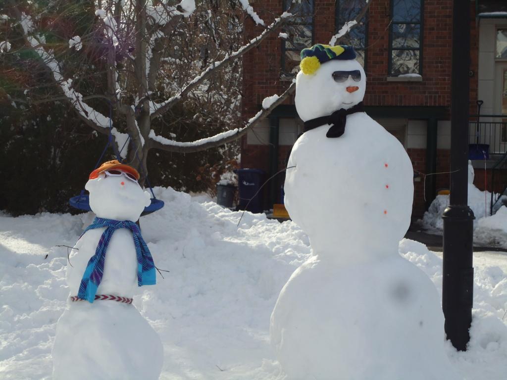 Neige à vendre ! 2012-022