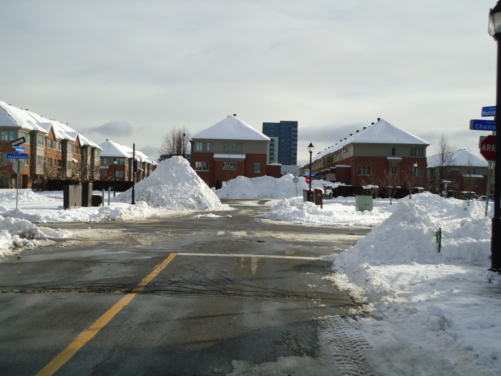 Neige à vendre ! 2012-023