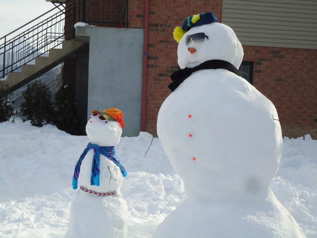 Neige à vendre ! 2012-025