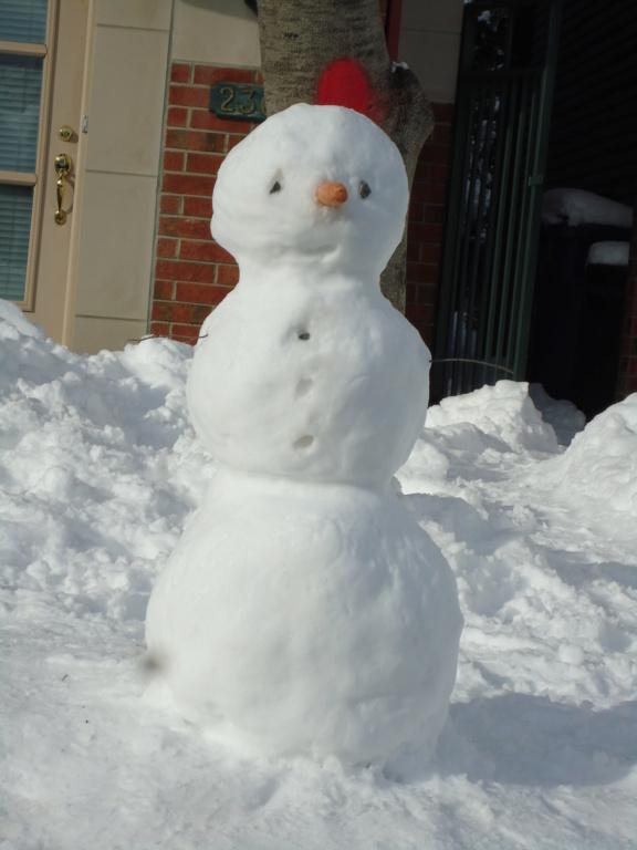 Neige à vendre ! 2012-028
