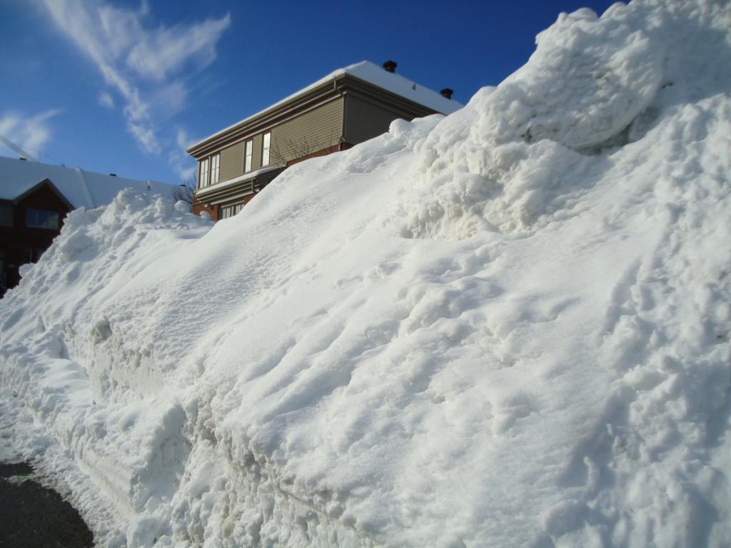 Neige à vendre ! 2012-031