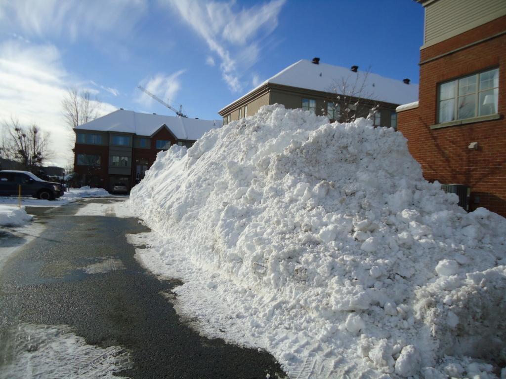 Neige à vendre ! 2012-033