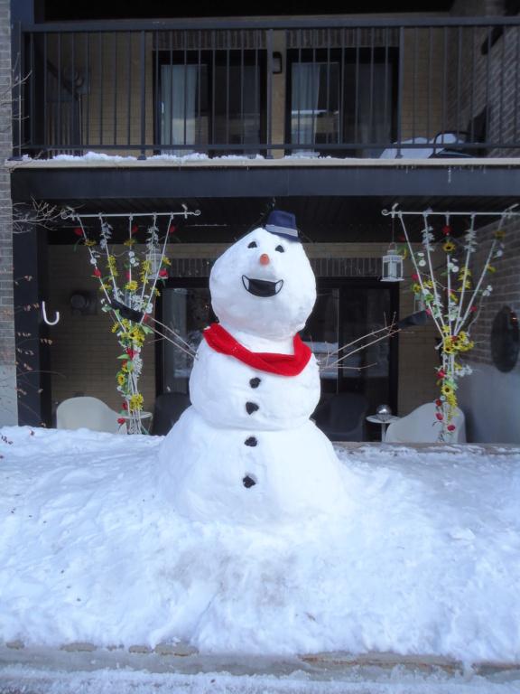 Neige à vendre ! 2012-035