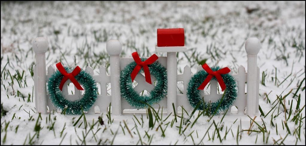 Thème du mois de décembre 2019 :  Le mois de décembre ! O03310