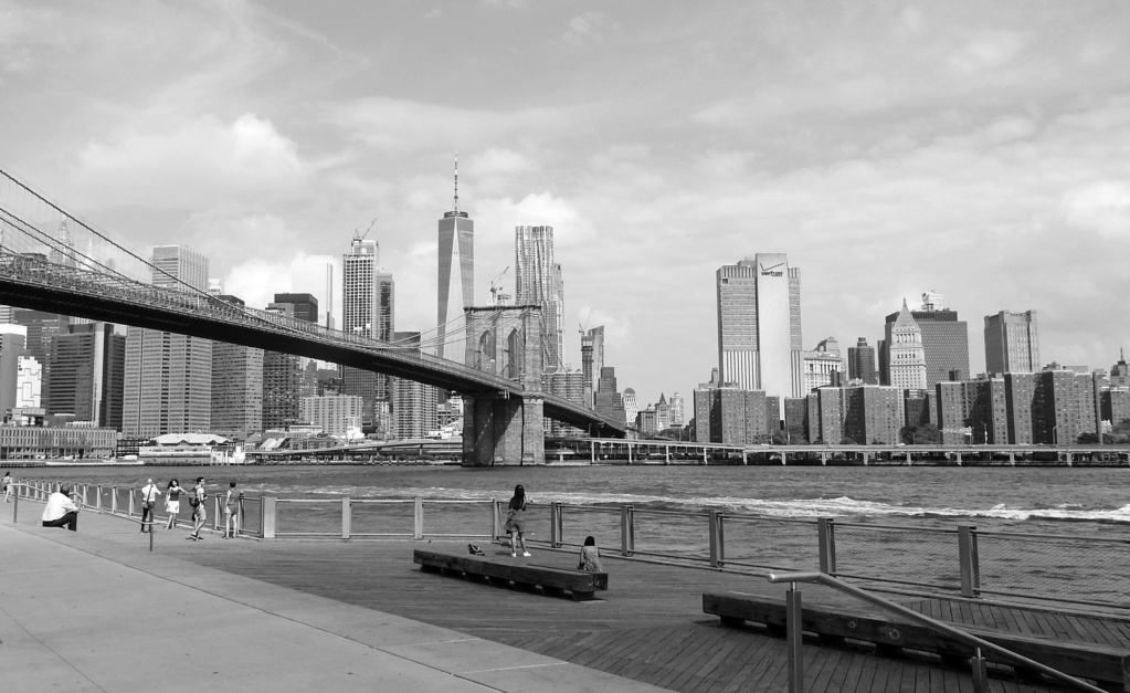 Visite à New York  Z2019-28