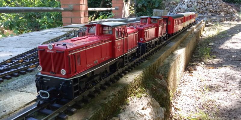 Companyia KTK (Carrils i trens de Cargolia) - Página 38 Img-2013