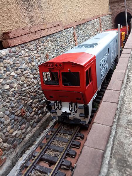 Els Ferrocarrils de la Terrassa-IV [Olot] Img_2115