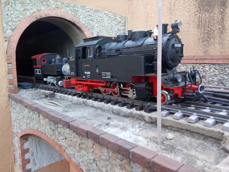 Els Ferrocarrils de la Terrassa-III [Olot] - Página 41 Img_2118