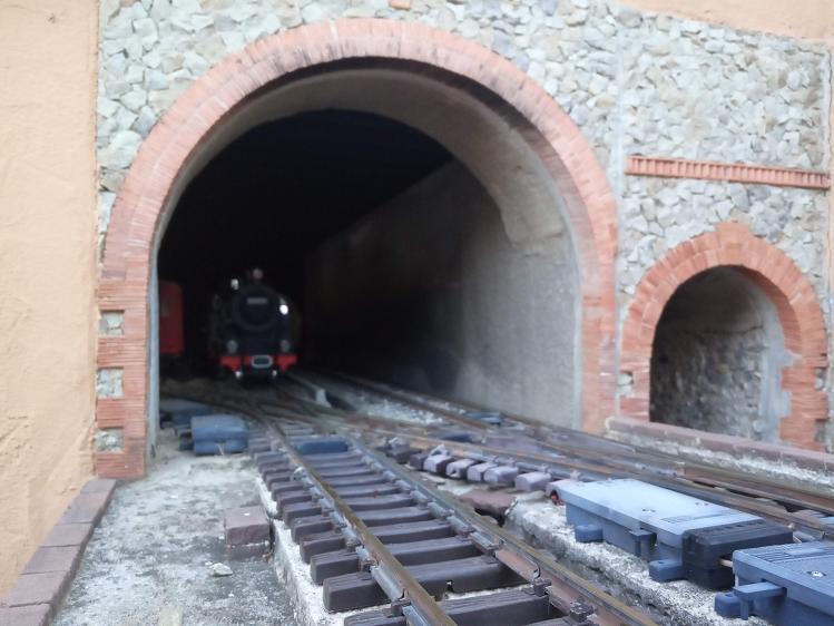 Els Ferrocarrils de la Terrassa-III [Olot] - Página 41 Img_2119