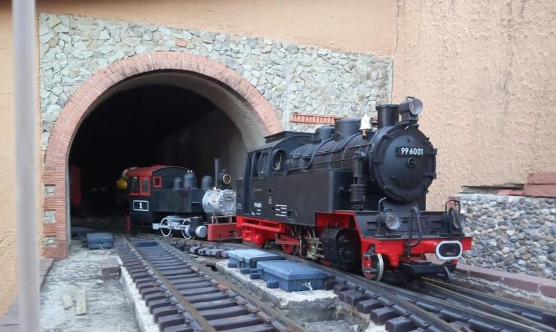 Els Ferrocarrils de la Terrassa-III [Olot] - Página 41 Img_2120
