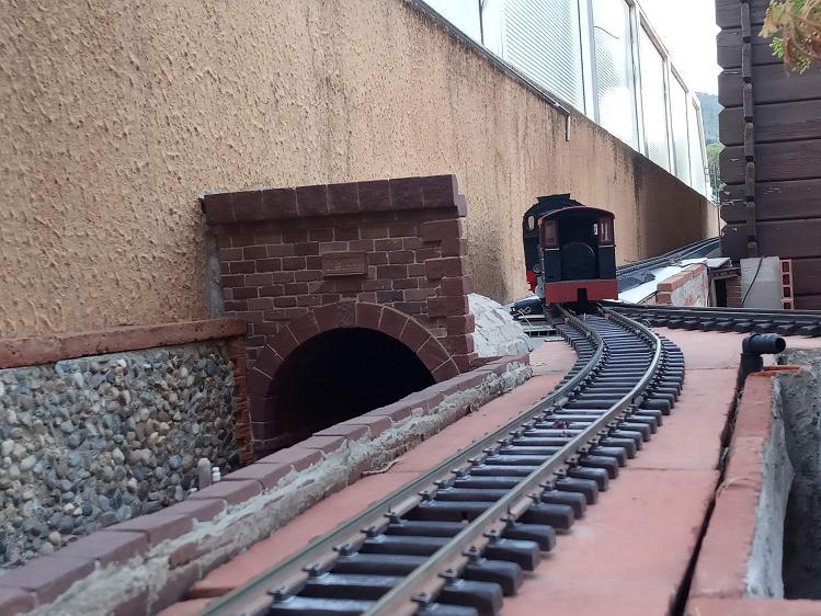 Els Ferrocarrils de la Terrassa-III [Olot] - Página 41 Img_2122
