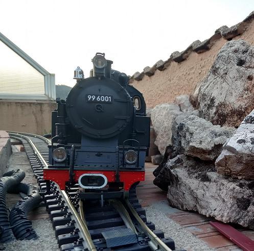 Els Ferrocarrils de la Terrassa-IV [Olot] Img_2127