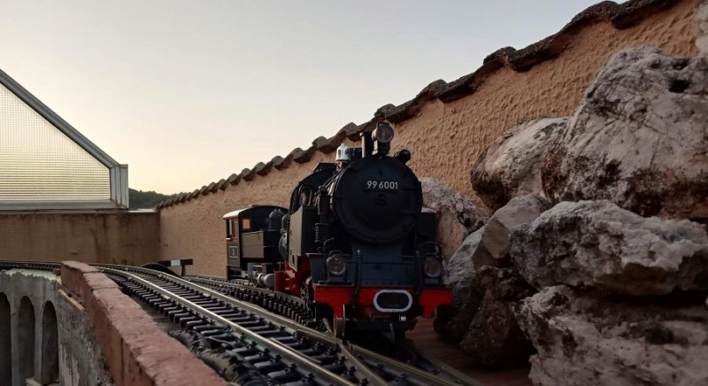 Els Ferrocarrils de la Terrassa-III [Olot] - Página 41 Img_2128