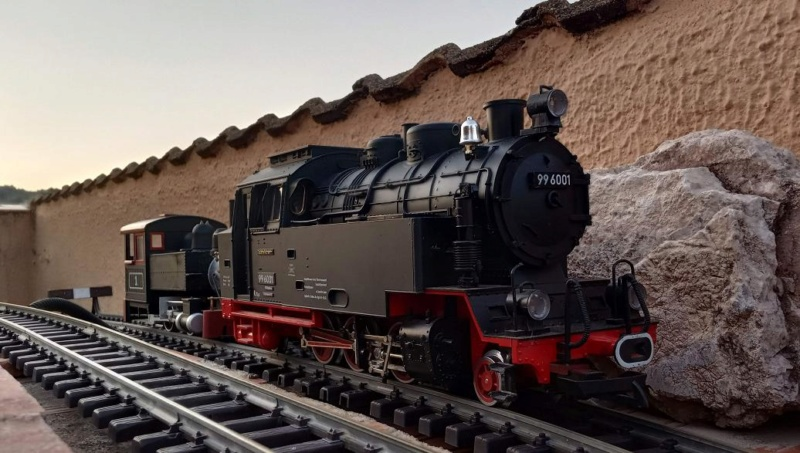 Els Ferrocarrils de la Terrassa-III [Olot] - Página 41 Img_2129