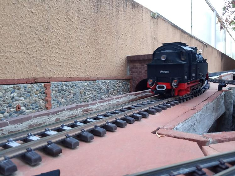 Els Ferrocarrils de la Terrassa-III [Olot] - Página 41 Img_2130