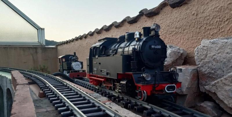 Els Ferrocarrils de la Terrassa-III [Olot] - Página 41 Img_2132