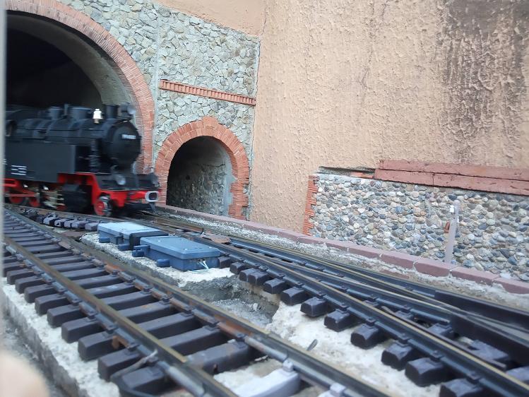 Els Ferrocarrils de la Terrassa-III [Olot] - Página 41 Img_2133