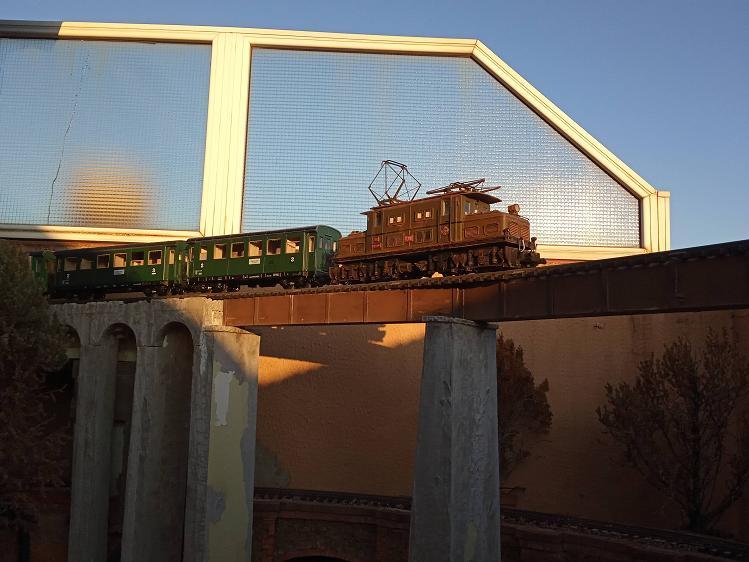 Els Ferrocarrils de la Terrassa-IV [Olot] - Página 5 Img_2168