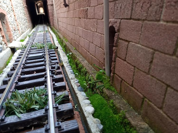 Els Ferrocarrils de la Terrassa-III [Olot] - Página 37 Xzxzxz13
